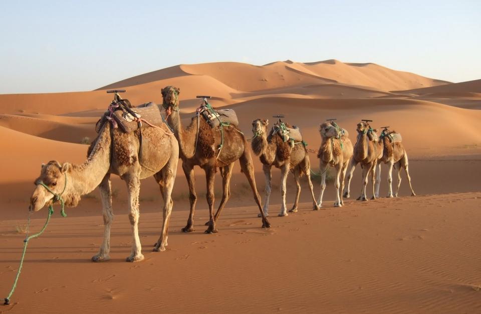 MAR1 Sahara adventure - Maroko - wyprawa motocykle + quady + UTV - wyprawy 4x4